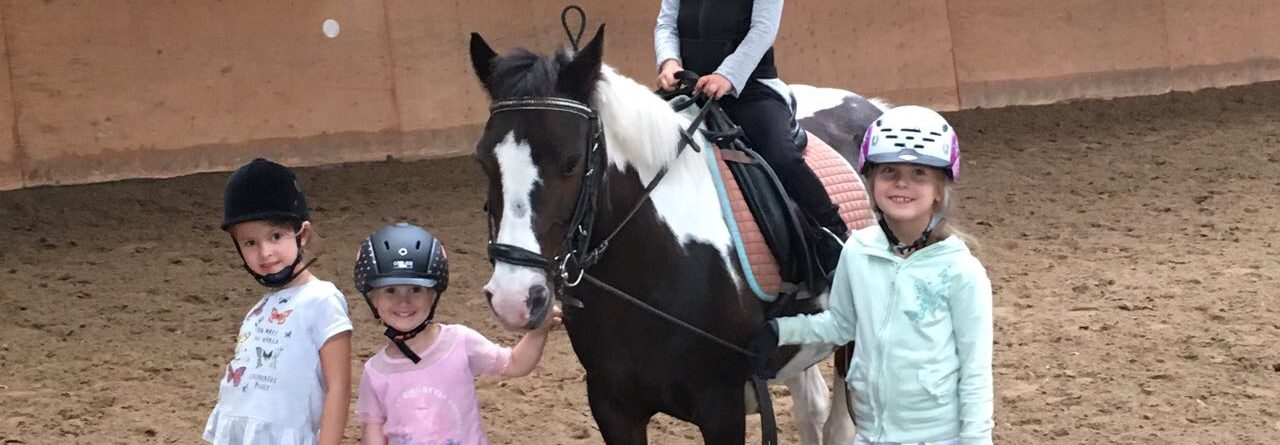 """Ran ans Pferd"""